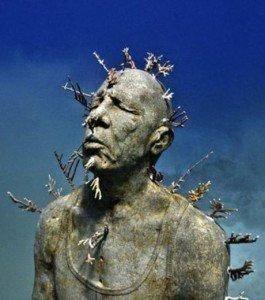 Tu viens avec moi au musée? N'oublie pas palmes et tuba! dans divers une-statue-en-ciment-ici-colonisee-depuis-longtemps-par-les-algues-marines_132152_w460-265x300